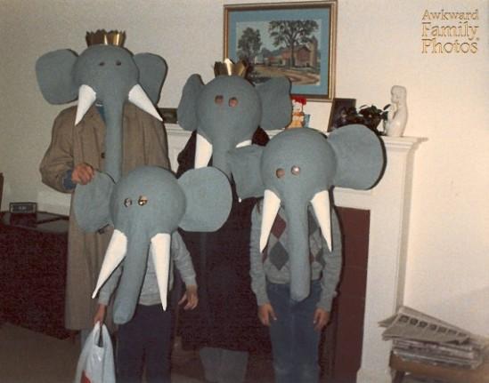 familia elefante